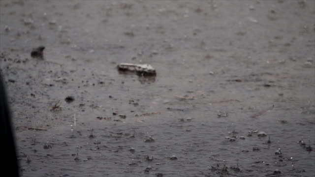 rain falling on pavement in slow motion - soundtrack stock videos & royalty-free footage