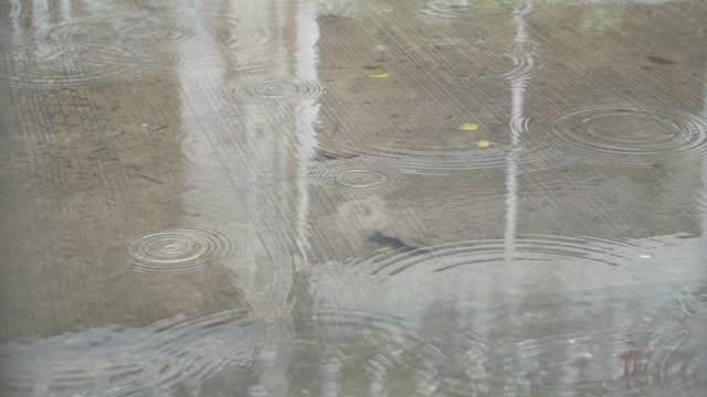 道路に降るhd雨。 - サウンドトラック点の映像素材/bロール