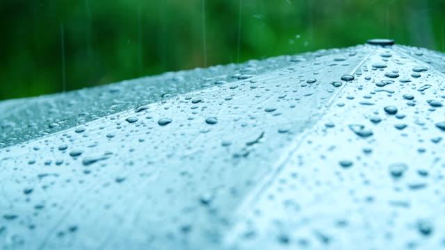 rain falling on umbrella - splash crown stock videos & royalty-free footage
