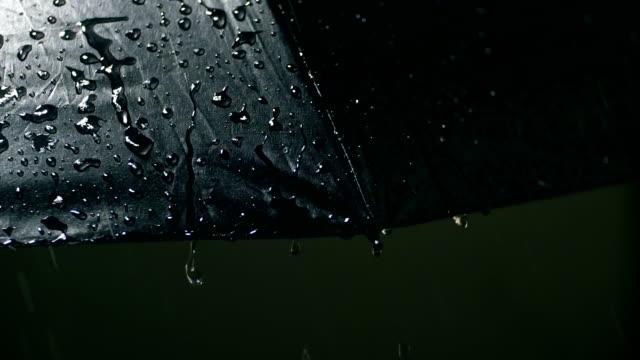 rain falling on umbrella,close-up - umbrella stock videos and b-roll footage