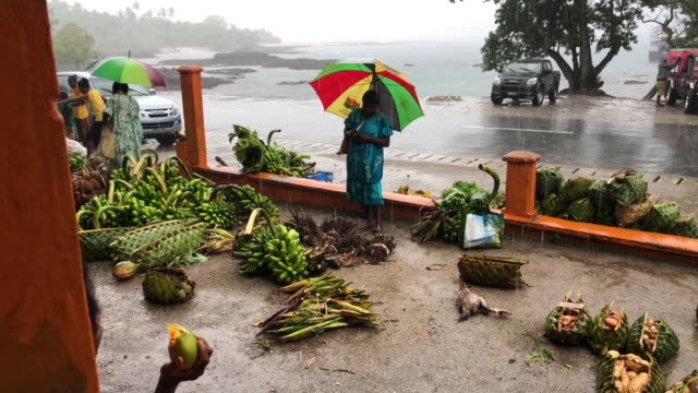 rain falls as people walk at a local produce market on december 6 2019 in tanna vanuatu 25 percent of vanuatu's 276000 citizens lost their homes in... - isole del pacifico video stock e b–roll