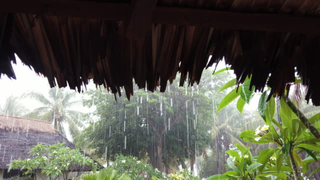 vidéos et rushes de rain falls from a traditional thatched roof in tanna vanuatu 25 percent of vanuatu's 276000 citizens lost their homes in 2015 when cyclone pam a... - océan pacifique sud