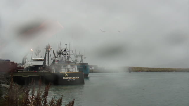 rain falls on fishing boats that dock on a grassy coast. timelapse - fischkutter stock-videos und b-roll-filmmaterial
