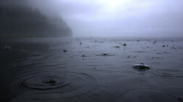 rain falls onto surface of water - raindrop stock videos & royalty-free footage