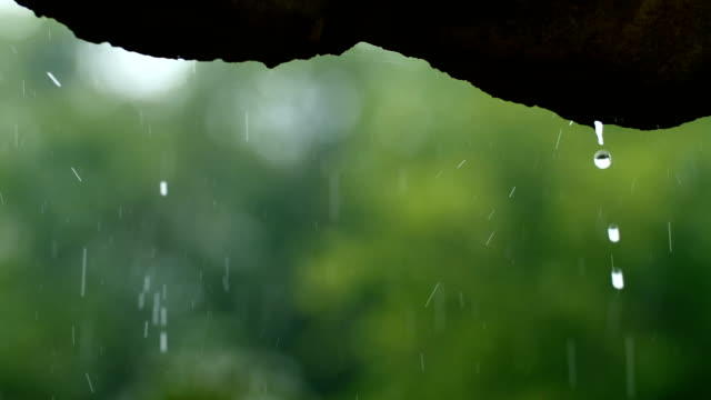 rain flows down from the roof - eaves stock videos and b-roll footage