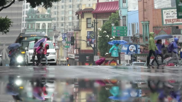 rain in the city. young school children with umbrellas are crossing a busy city street on a rainy day. - san francisco california stock videos & royalty-free footage