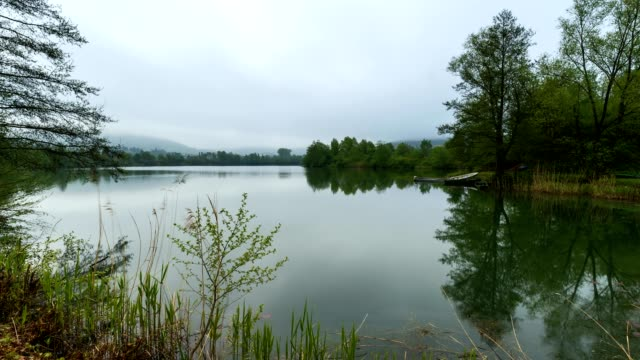 Rain in the morning at the lake in spring, Freudenberg, Baden Wurttemberg, Germany