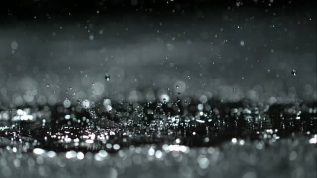 rain on black - macro stock videos & royalty-free footage