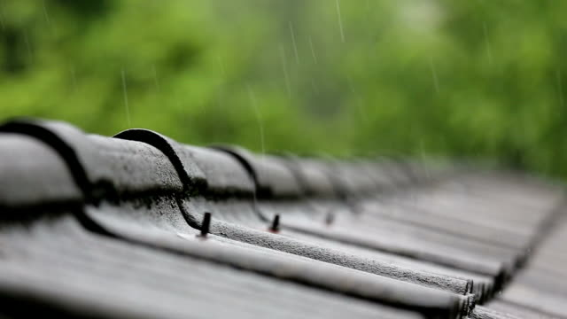 rain on roof - roof stock videos & royalty-free footage