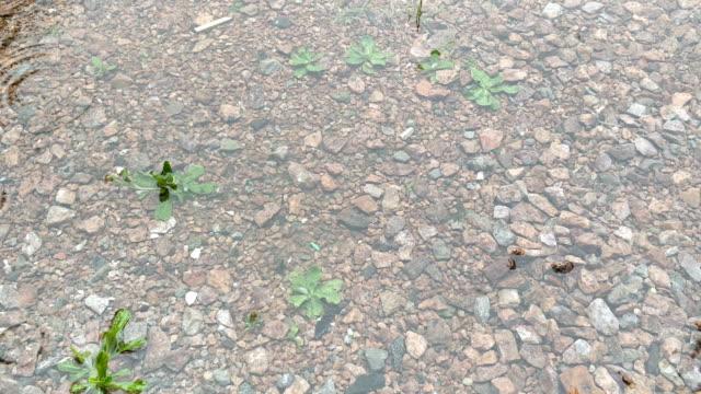 rain on the gravel - raindrop stock videos & royalty-free footage