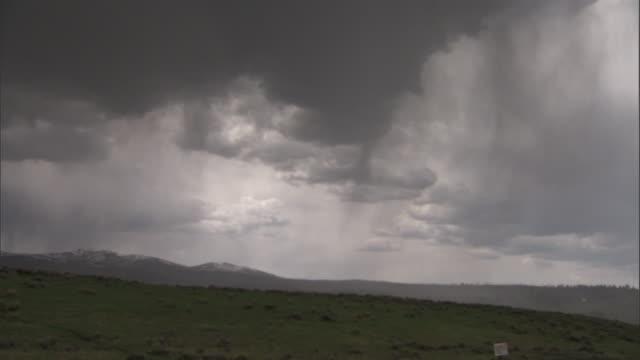 rain pours down onto meadow, yellowstone, usa - meadow stock videos & royalty-free footage