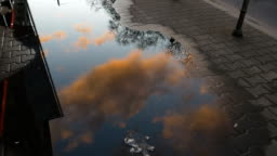 Rain Puddle Reflecting Morning Clouds and Sky