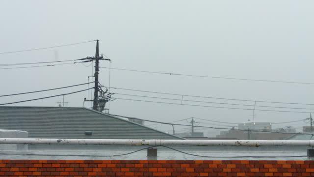 rain. - 電気部品点の映像素材/bロール