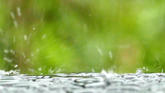 vídeos y material grabado en eventos de stock de tipo lluvia - paraguas