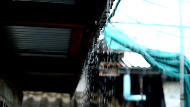 rain - gutter stock videos and b-roll footage