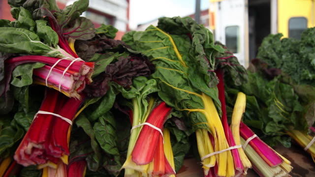 CU PAN Rainbow chard on table at outdoor farmers market / Rutland, Vermont, United States