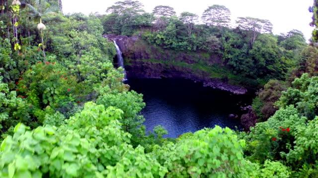 vídeos y material grabado en eventos de stock de rainbow falls, hawai - isla grande de hawái islas de hawái