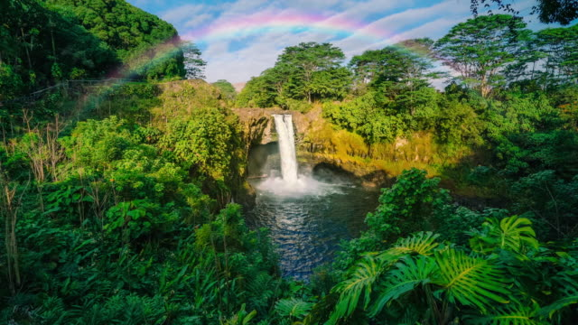 rainbow falls hilo big island hawaii in hdr 4k prores - hawaii islands stock videos & royalty-free footage