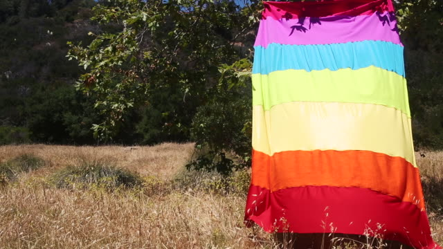 rainbow flag hanging on tree blowing in wind - installationskunst stock-videos und b-roll-filmmaterial
