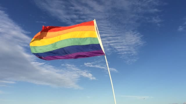 rainbow flag waiving in the wind, south beach, miami, florida, united states - flag blowing in the wind stock videos & royalty-free footage