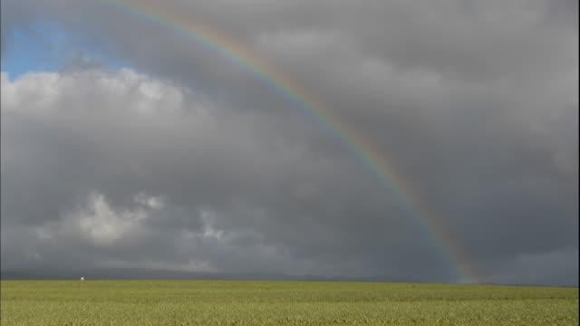 a rainbow stretches across a stormy sky. - 虹点の映像素材/bロール