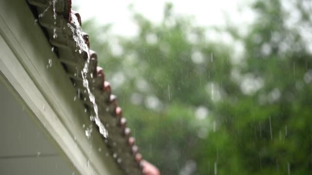 vídeos de stock, filmes e b-roll de gota de chuva caindo no telhado - chuva