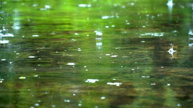 SLOMO raindrop on shallow pond