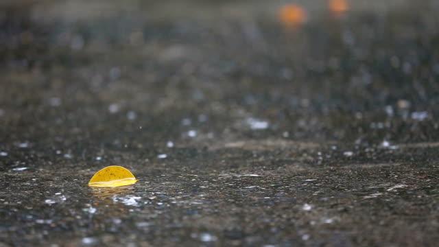 vídeos de stock, filmes e b-roll de raindrops caindo no chão. - pingo de chuva