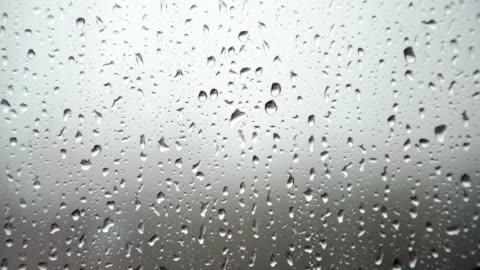 raindrops on window - condensation stock videos & royalty-free footage