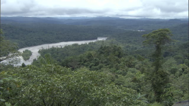 stockvideo's en b-roll-footage met rainforest and river, papua new guinea - valley