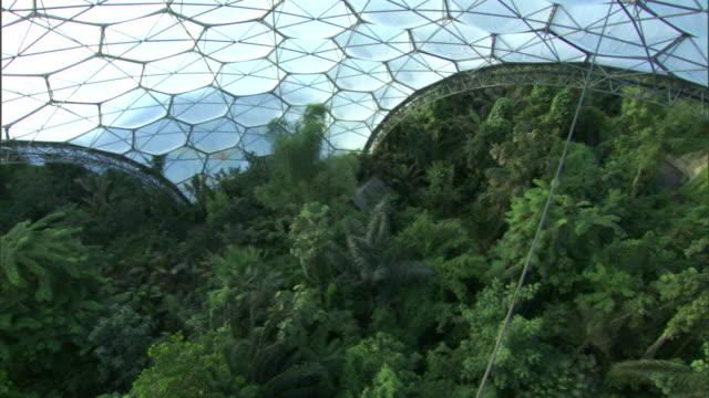 vídeos y material grabado en eventos de stock de a rainforest grows inside a dome at the eden project. - cornwall inglaterra