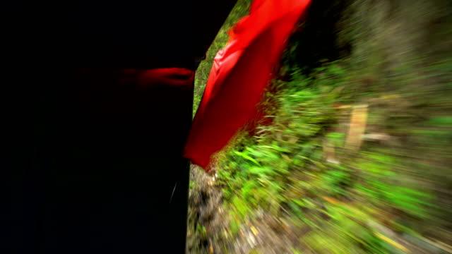 rainforest view from inca train hiram bingham railroad - machu picchu stock videos and b-roll footage