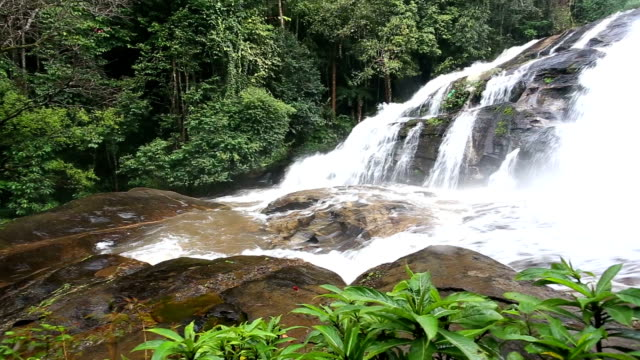 rainforest waterfal, chiang mai, thailand. - gold rush stock videos and b-roll footage