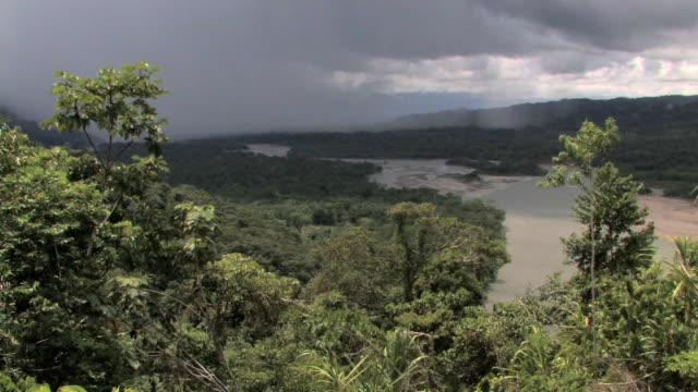 AERIAL rainforest with rainforest and river with overcast sky/ Manu National Park, Peru