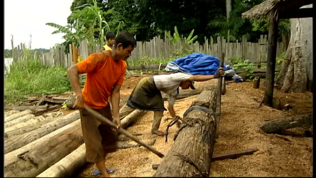 rainforests more of logs being sawn into thinner lengths of plank / men using implements to roll logs or tree trunk along ground / pan left to right... - sawdust stock videos and b-roll footage
