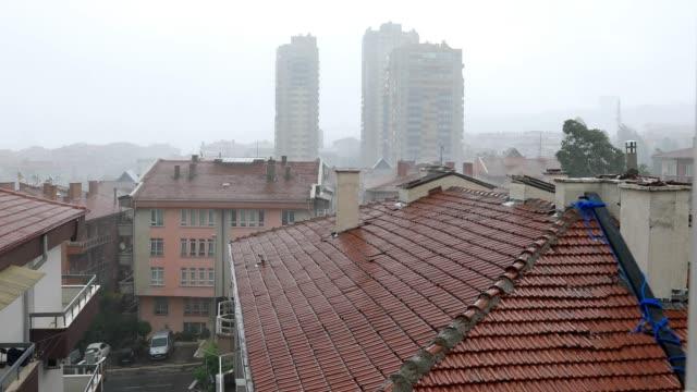 Raining Cats and Dogs at Ankara in city