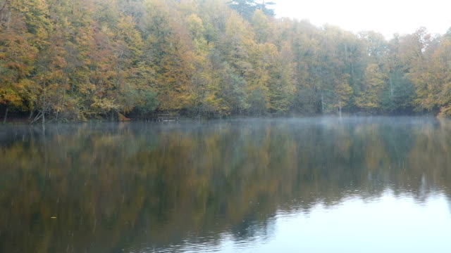 raining on foggy lake at autumn