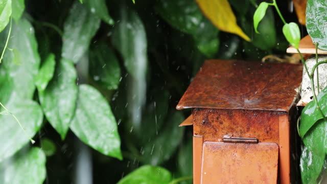 vídeos y material grabado en eventos de stock de lluvia en buzón rojo - buzón postal