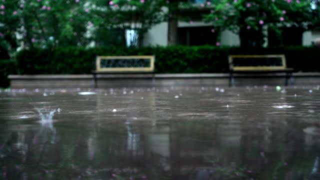 vidéos et rushes de il pleut des - pluie diluvienne