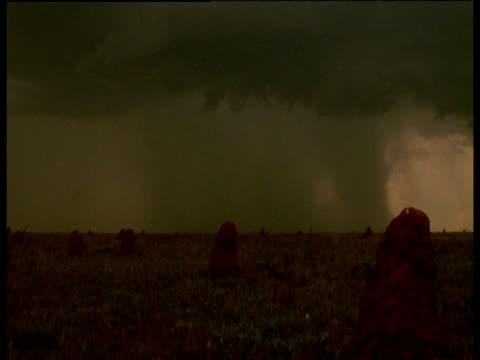 Rainstorm sweeps in over cerrado grassland and termite mounds