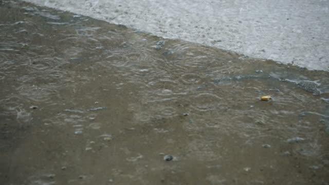 雨の日 - 集中豪雨点の映像素材/bロール