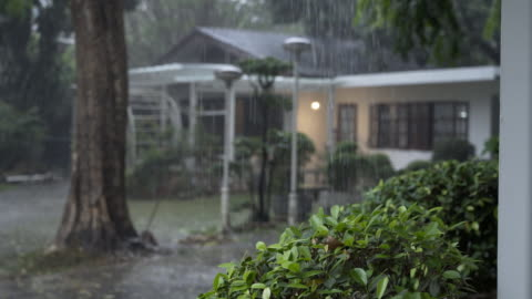 4k rainy day with blurred house in the background, chiang mai, thailand - shower stock videos & royalty-free footage