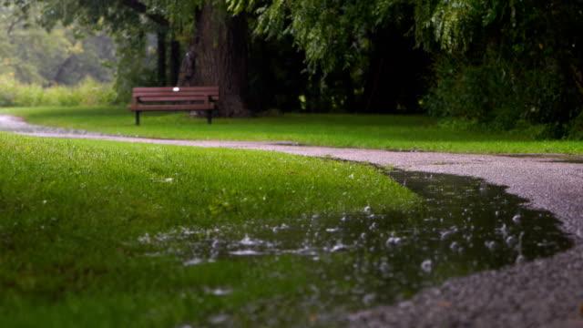 rainy days in toronto park - public park stock videos & royalty-free footage