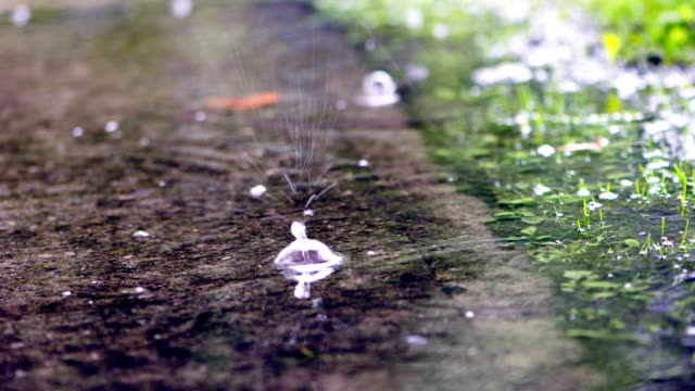 rainy days in toronto park - landscaped stock videos & royalty-free footage