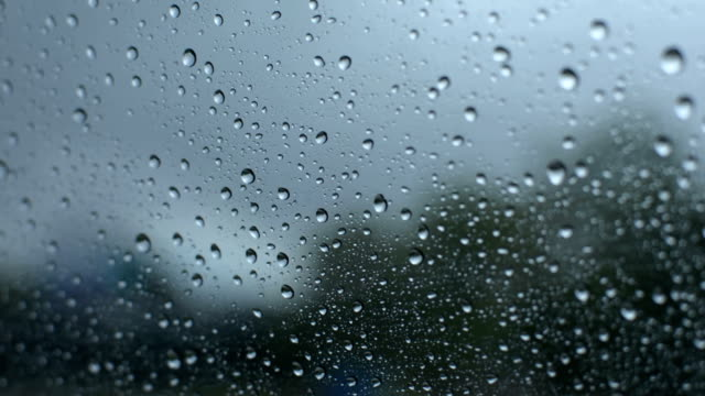 Rainy highway drive.