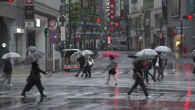 rainy morning in shibuya, tokyo, japan - morning stock videos & royalty-free footage