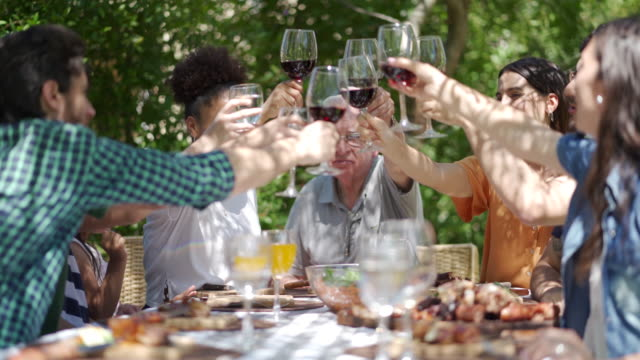 vídeos de stock, filmes e b-roll de levante os óculos para a família! - drink