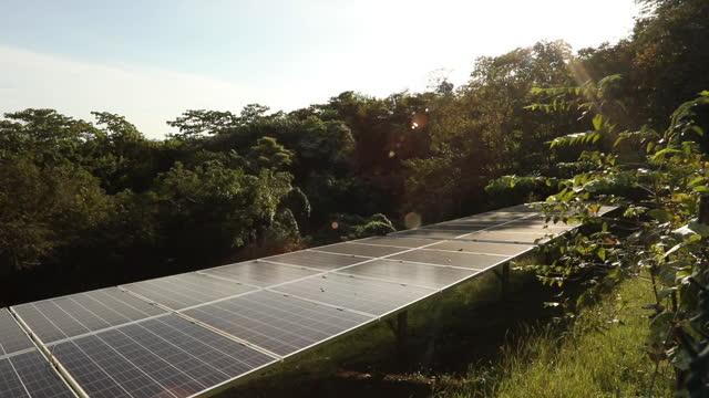 vídeos y material grabado en eventos de stock de vista elevada de los colectores solares en un entorno exuberante de la selva - inclinado hacia abajo