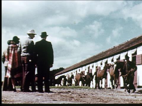 stockvideo's en b-roll-footage met 1947  raising race horses in tipperary - werkdier