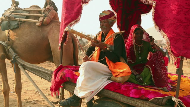 Rajasthani senior man playing Ektara in the fair, Pushkar, Rajasthan, India